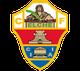 شعار نادي ألتشي