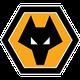 شعار نادي وولفرهامبتون