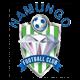 شعار نادي نامونجو
